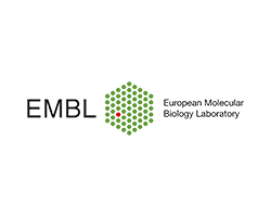 European Molecular Biology Laboratory