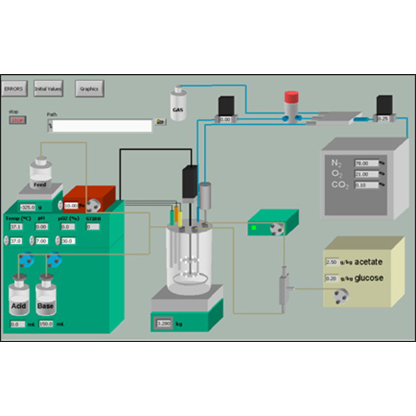 Control of Fermentation Processes